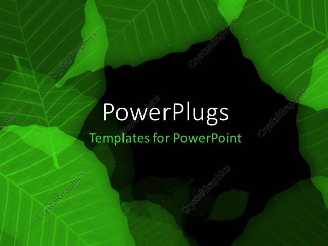 Powerpoint Template Overlapping Green Leaves On Black Surface 15011