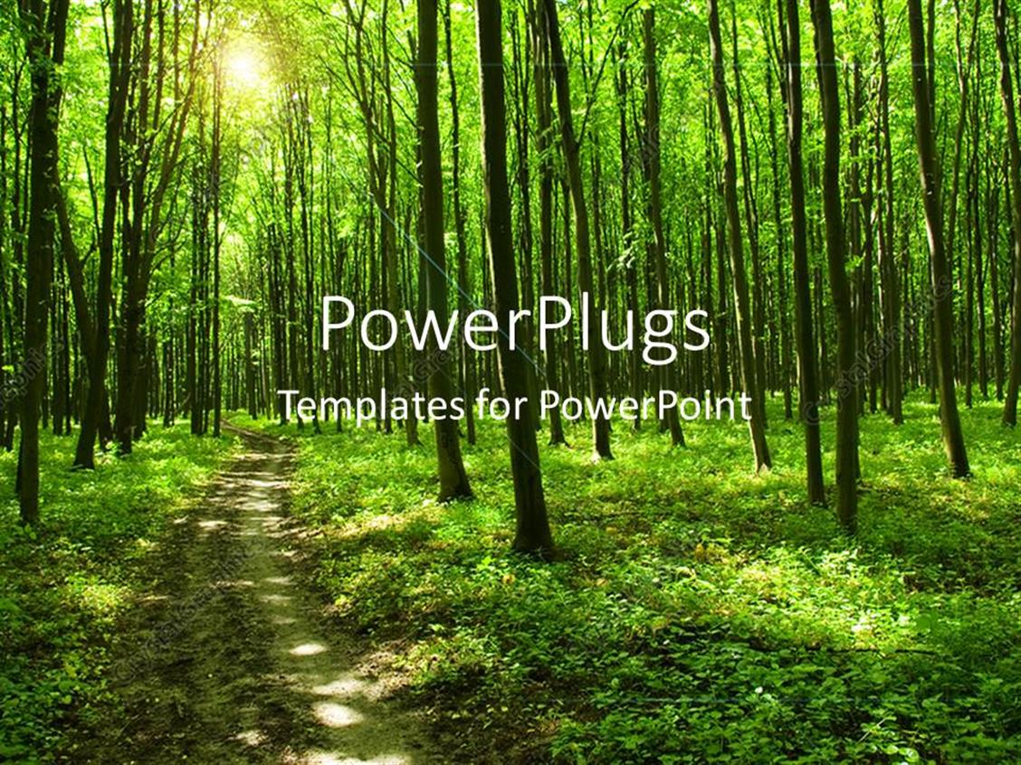 PowerPoint Template Displaying Path in Green Forest with huge Trees and Sunlight