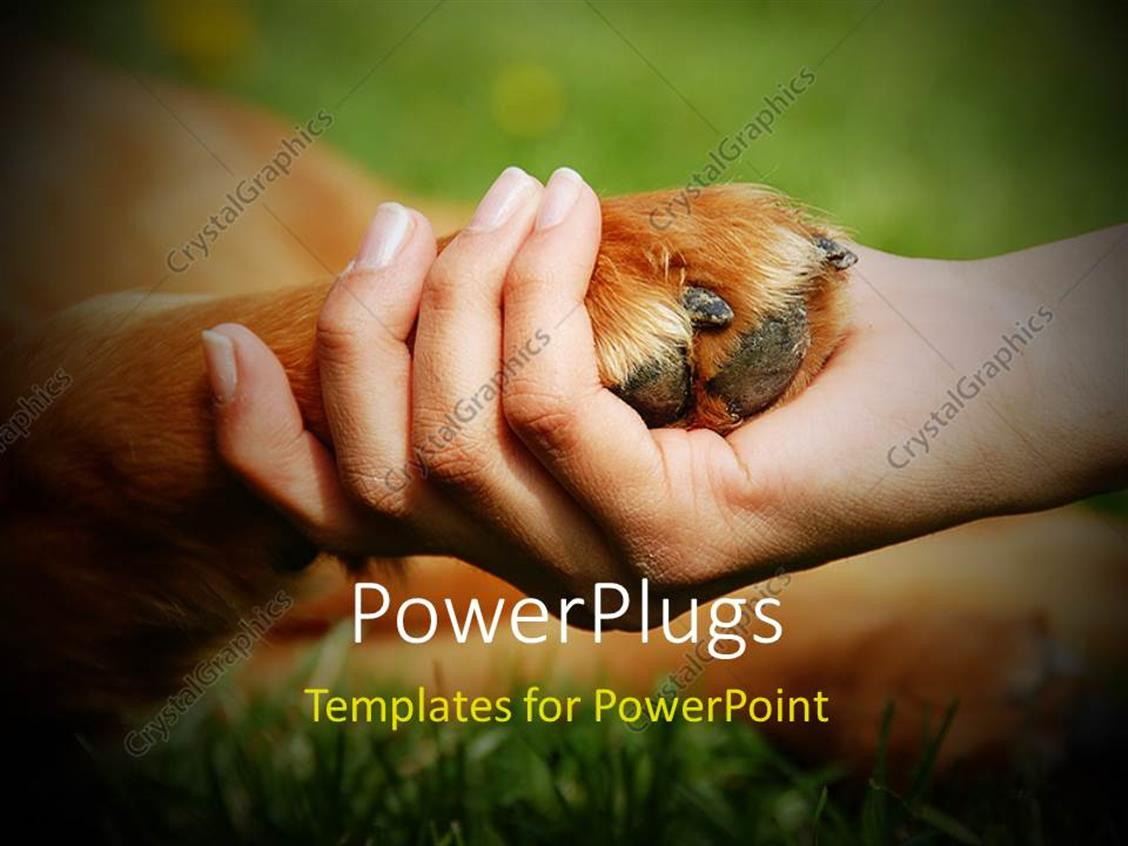 PowerPoint Template Displaying a Person Holding the Dog's Paw in his Hand