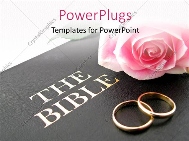 Powerpoint Template Pink Rose And Wedding Bands On Holy Bible For