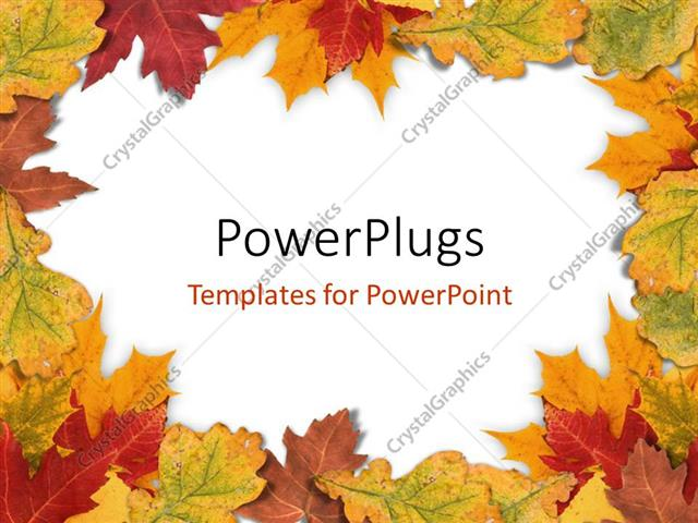 Powerpoint template plain white background framed with autumn powerpoint template displaying plain white background framed with autumn leaves toneelgroepblik Choice Image