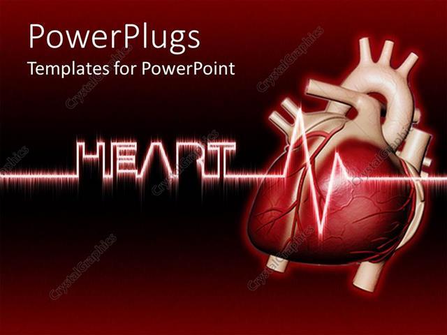 Powerpoint Template Real Human Heart With Heartbeat Heart Written