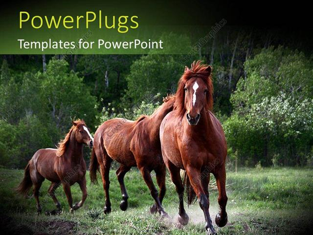 Powerpoint template red horses running in green nature 1803 powerpoint template displaying red horses running in green nature toneelgroepblik Images