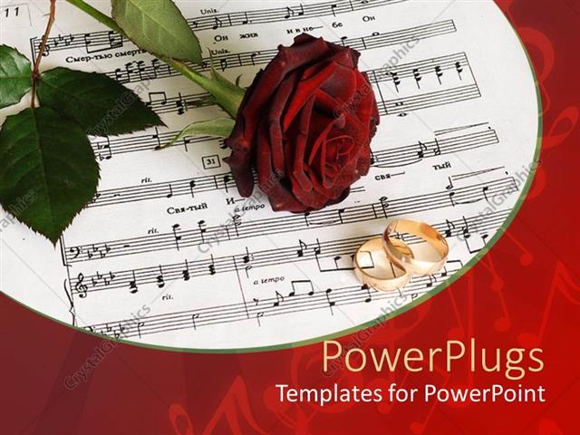 Powerpoint Template Red Rose And Two Gold Wedding Bands On Sheet