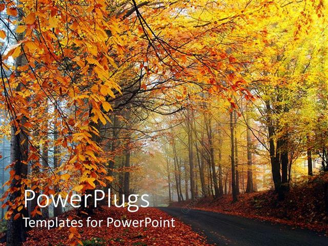 Powerpoint template road riding through the trees in a forest in powerpoint template displaying road riding through the trees in a forest in autumn trees with withered toneelgroepblik Image collections