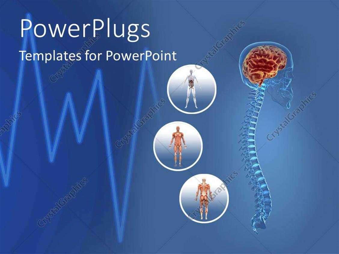 Powerpoint template science health human body anatomy organs powerpoint template displaying science health human body anatomy organs heart beat and life lines blue toneelgroepblik Image collections