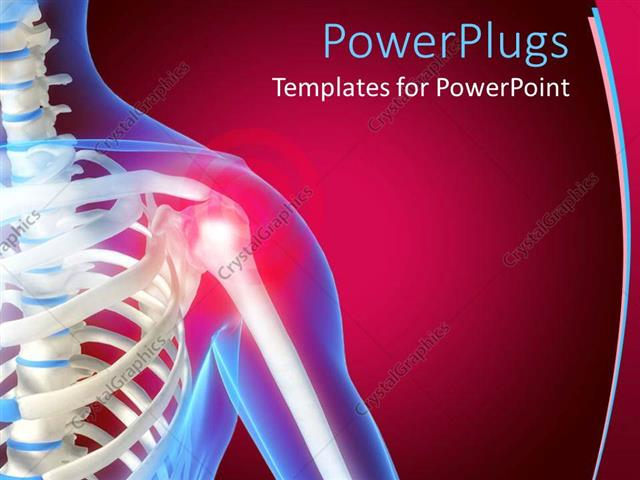 PowerPoint Template: skeleton showing the anatomy of shoulder, red ...