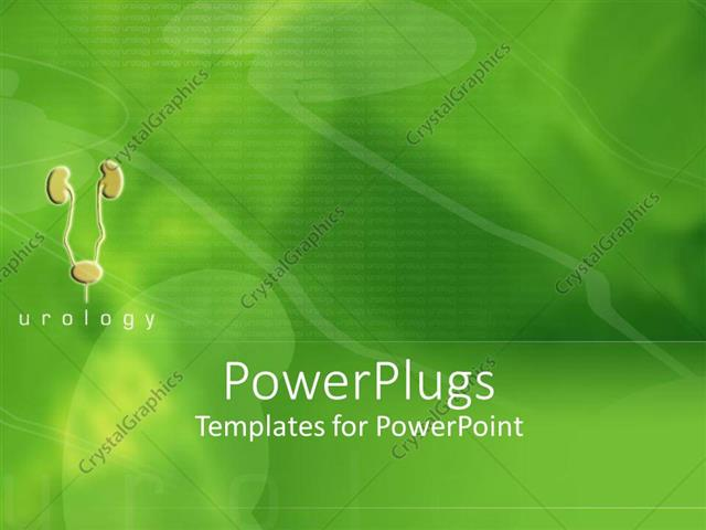 Powerpoint template small visualization of urinary tract with powerpoint template displaying small visualization of urinary tract with kidneys and bladder on green toneelgroepblik