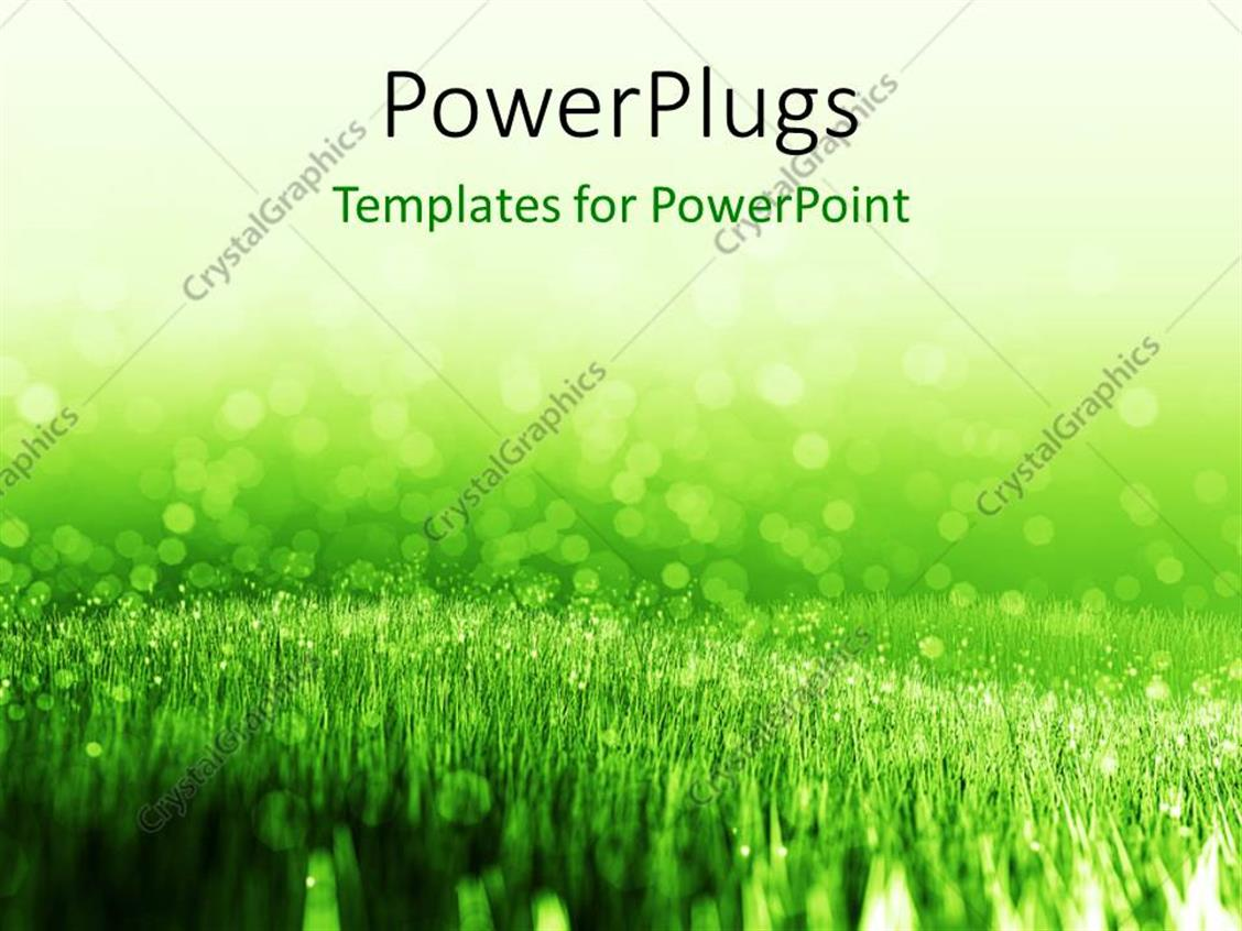 powerpoint template  spring background with green summer