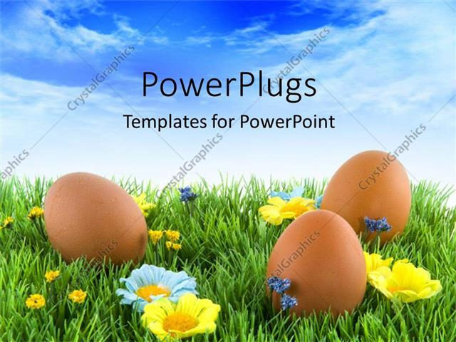 Powerpoint Template Three Brown Colored Easter Eggs On An Open