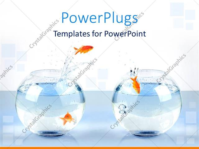 Powerpoint template three gold fish jump from one bowl to another powerpoint template displaying three gold fish jump from one bowl to another toneelgroepblik Images