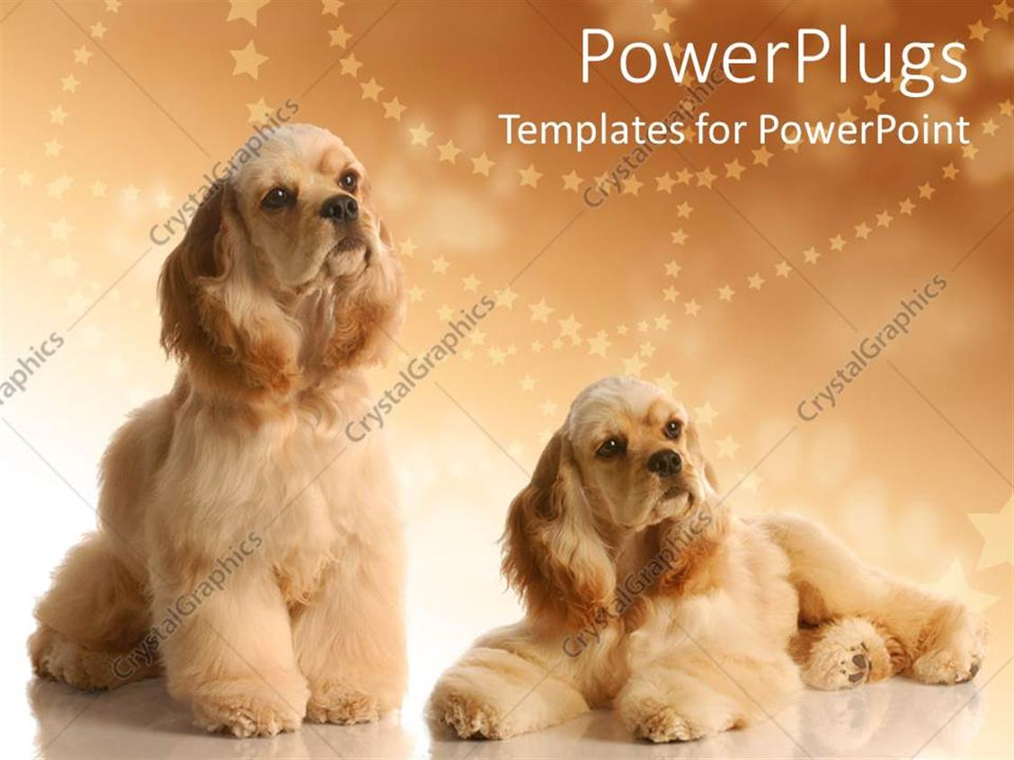 Powerpoint Template Two Big Fluffy Dogs On A Cozy Brown Background