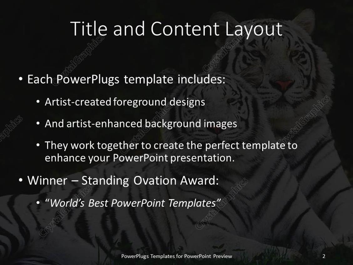 PowerPoint Template: Two white tigers laying in the grass (31305)