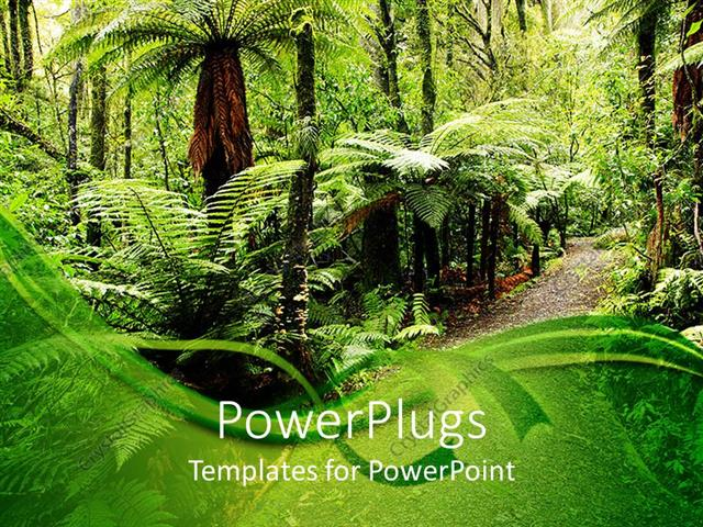 Powerpoint template walking path through natural tropical forest powerpoint template displaying walking path through natural tropical forest with palm trees toneelgroepblik Image collections