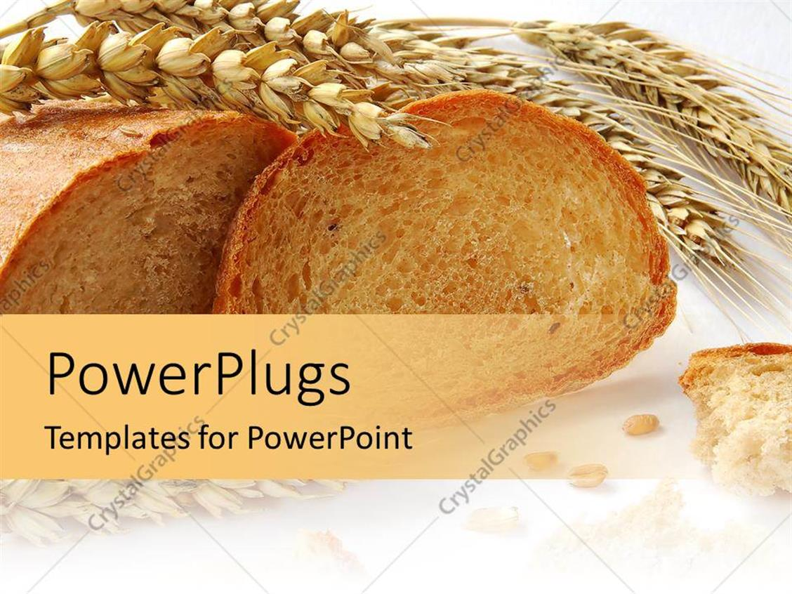 powerpoint template  wheat and grains bread with gluten