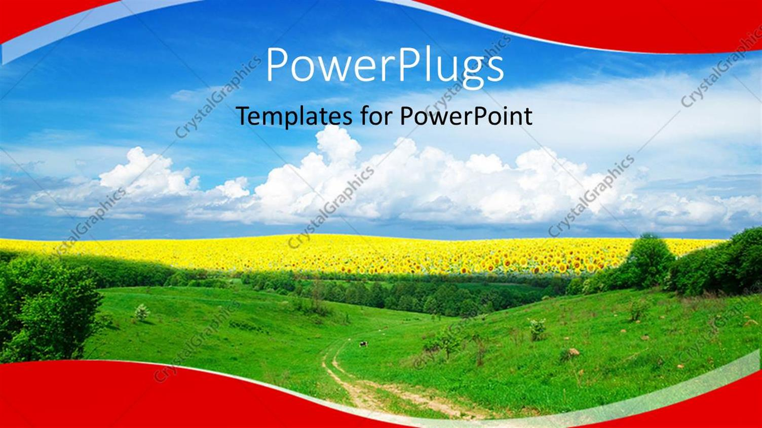 PowerPoint Template Displaying a Landscape View of a Plain Green Field with Sun Flowers