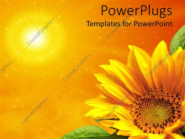 PowerPoint Template Displaying Yellow Sunflower with Green Leaves in Bottom Right Corner with Sun in Top Left Corner on Orange Background