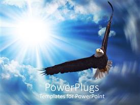 PPT theme having american bald eagle soaring across the sky, sunshine, clouds