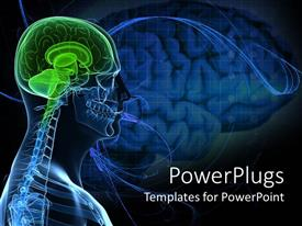 Elegant presentation theme enhanced with anatomy of a healthy brain of the human body
