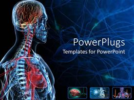 Colorful PPT layouts having the anatomy of a human with bluish background