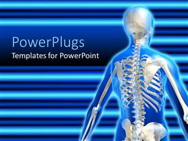 Presentation theme with anatomy of the human skeletal system on a blue background