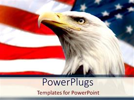 Elegant theme enhanced with bald eagle with american flag white background
