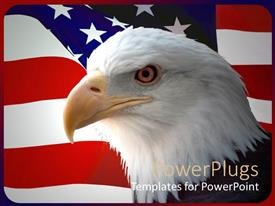 Presentation featuring bald eagle in front of an American flag background