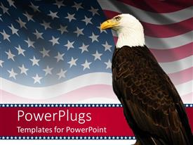Slides having bald eagle in front of an american flag background