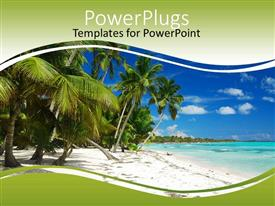 PPT theme featuring a beautiful beach with a lot of palm trees and ocean