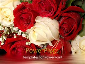 Beautiful presentation with beautiful bunch of white and red roses with water droplets