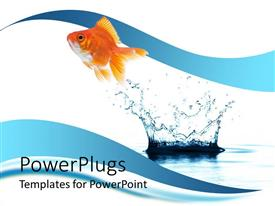 Audience pleasing slide deck featuring a beautiful fish and a water splash with clear background