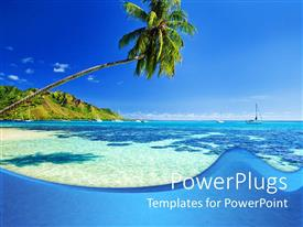 Presentation theme enhanced with blue ocean and green palm tree under blue sky