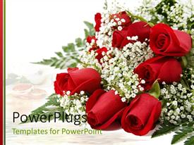 Presentation design enhanced with bouquet of dozen red roses with the white background