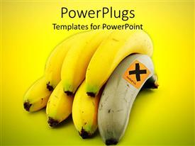 Elegant presentation theme enhanced with bunch of bananas with one white with harmful sign