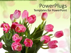 Colorful presentation design having bunch of yellow and pink flowers with yellow background