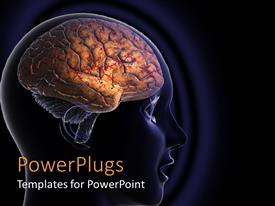 Elegant PPT theme enhanced with close p of human head showing human brain in dark blue background