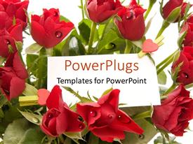 Audience pleasing PPT layouts featuring a collection of red roses with small red hearts and place for text