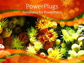Amazing PPT theme consisting of colorful anemone in aquarium under light, orange and green wave background