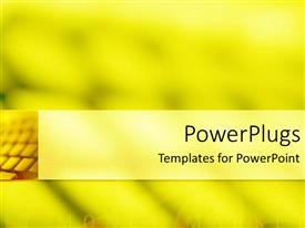 PPT layouts enhanced with computer keyboard blended on blurry yellow surface