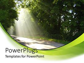 Elegant PPT layouts enhanced with country road driving through big trees with sun rays