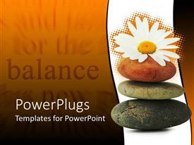 Zen powerpoint templates ppt themes with zen backgrounds slide set having daisy flower resting on three zen stones template size toneelgroepblik Gallery