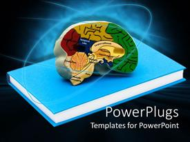Presentation theme enhanced with the depiction of a book and a brain with bluish background