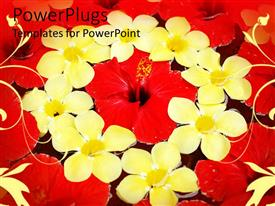 Elegant presentation enhanced with depiction of eight yellow and red flowers in a circle