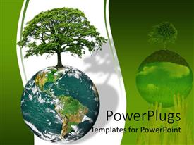 Presentation theme enhanced with earth globe with tree growing on it on a white and green background