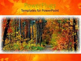 PPT theme having fall in forest path and colorful trees