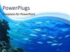 PPT theme enhanced with fishes swimming in blue water with blue waves in the background