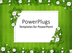 Presentation having floral pattern with white little flowers on green patterned background