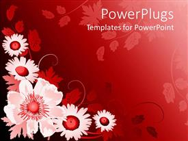 Audience pleasing PPT theme featuring floral pattern with white and red flowers in red background