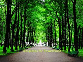 Amazing PPT theme consisting of forest with huge green trees and benches