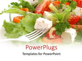 5000 grocery powerpoint templates w grocery themed backgrounds colorful ppt theme having fork in dish of vegetable salad tomato and lettuce template size toneelgroepblik Gallery